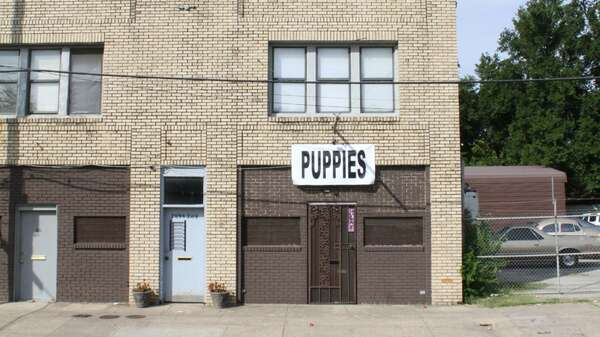 The curator Kevin Ruben Jacobs moves his project space from Dallas, Texas to Berlin. Here you see his space with an exhibition by talked about artist Puppies Puppies. Foto: Kevin Ruben Jacobs